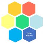 Court support snip